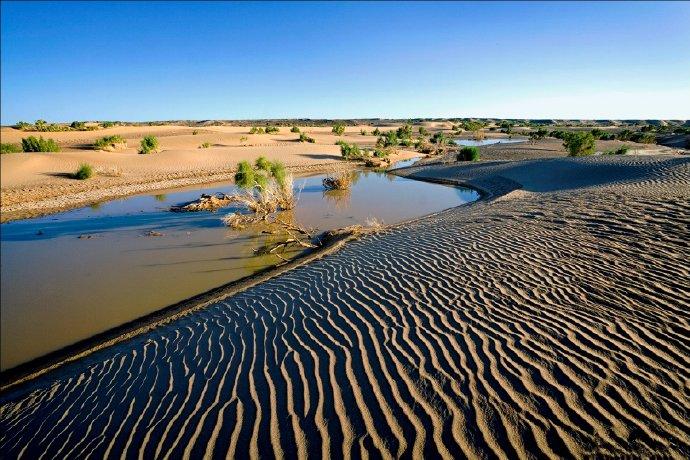 2020福利汇总第161期:沙漠绿洲